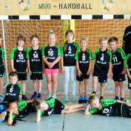 HG Ansbach richtet Mini-WM 2019 aus